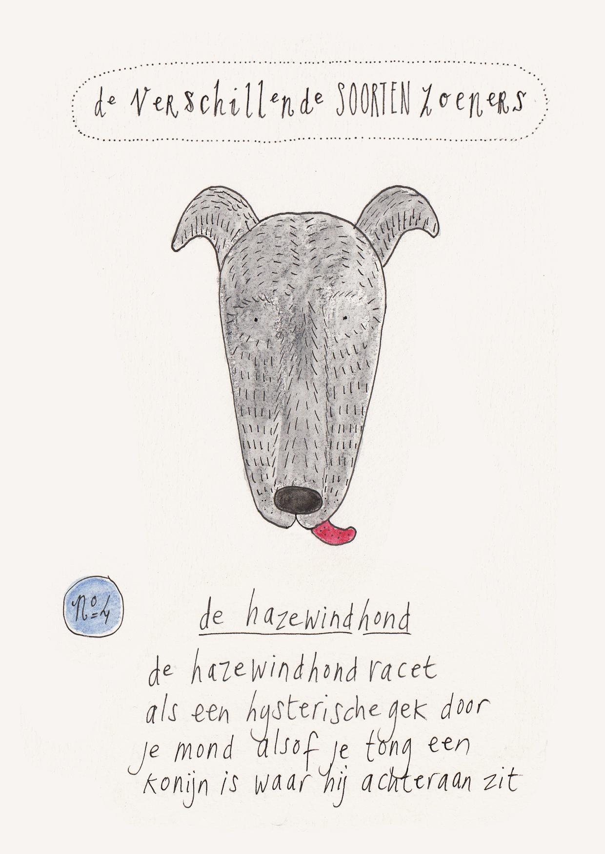 Zoeners: de hazewindhond uit Pippa Leeuwenhart